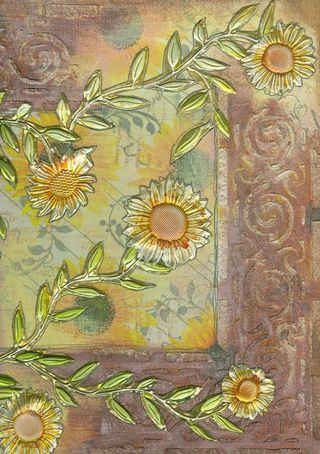 Sunflower 3 001